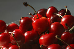 Fresh cherry. Cherry just from tree for dessert Royalty Free Stock Photos