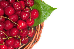 Fresh cherry Stock Photos