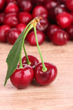 Fresh cherry Stock Images