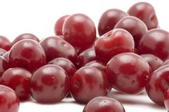Fresh cherry Stock Photography