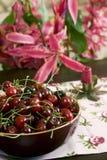 Fresh cherry Royalty Free Stock Image