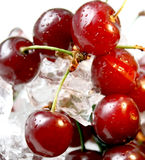 Fresh cherry. Closeup with drops of water in ice Stock Photo