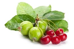 Fresh cherry and apples Royalty Free Stock Photo