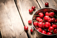 Fresh cherry in the bucket. Royalty Free Stock Photos