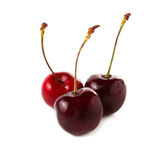 Fresh Cherry, Cherries isolated on white Background Royalty Free Stock Photo