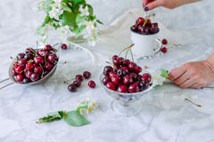 Fresh cherry fruit in glass vase, other dishes with berries and jar with jasmine and wildflowers on the light marble table. Female. Hand taking berries. Soft royalty free stock images