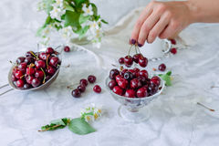 Fresh cherry fruit in glass vase, other dishes with berries and jar with jasmine and wildflowers on the light marble table. Female. Hand taking berries. Soft stock photos