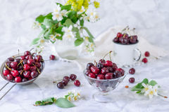 Fresh cherry fruit in glass vase, other dishes with berries and jar with jasmine and wildflowers on the light marble table. Soft s. Elective focus. Summer stock image