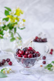 Fresh cherry fruit in glass vase, other dishes with berries and jar with jasmine and wildflowers on the light marble table. Soft s. Elective focus. Summer royalty free stock photo