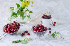 Fresh cherry fruit in glass vase, other dishes with berries and jar with jasmine and wildflowers on the light marble table. Soft s. Elective focus. Summer stock photo