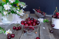Fresh cherry fruit in glass vase, other dishes with berries and jar with jasmine and wildflowers on the old wooden table. Soft sel. Ective focus. Summer rustic royalty free stock images