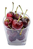 Fresh cherry isolated on white Stock Photos