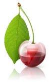 Fresh cherry juice Stock Photos