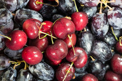 Fresh cherry with red grape. Macro photo background Stock Images