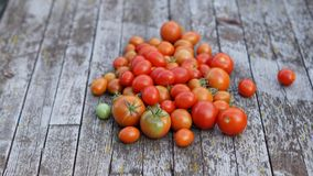 Fresh cherry ren and orange tomatoes on wooden background Stock Images