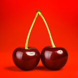 Fresh Cherry royalty free stock photo