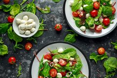 Free Fresh Cherry Tomato, Mozzarella Salad With Green Lettuce Mix And Red Onion. Served On Plate. Healthy Food. Stock Images - 113973144