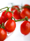 Fresh cherry tomatoes Royalty Free Stock Photo