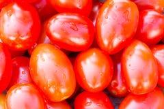 Fresh cherry tomatoes background Royalty Free Stock Image