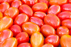 Fresh cherry tomatoes background Royalty Free Stock Photos