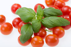 Fresh cherry tomatoes with basil, Royalty Free Stock Photo