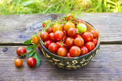 Fresh Cherry Tomatoes in bowl Stock Photography