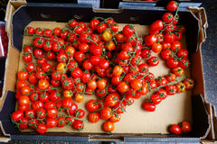 Fresh Cherry Tomatoes in Box Royalty Free Stock Photos