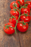 Fresh cherry tomatoes on a cluster Stock Image
