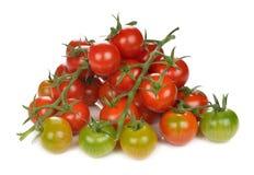 Fresh cherry tomatoes Royalty Free Stock Photos