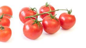 Fresh cherry tomatoes isolated on white background. Royalty Free Stock Photos