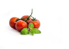 Fresh cherry tomatoes with oregano. Bunch of fresh cherry tomato with oregano leaf on white Background Stock Photos