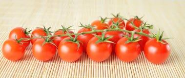 Fresh cherry tomatoes Stock Photography