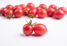 Fresh cherry tomatoes. Photographed indoors royalty free stock image