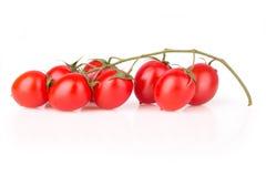 Fresh cherry tomatoes Royalty Free Stock Image