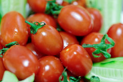 Fresh cherry tomatoes with selected focus Stock Photography