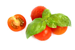 Fresh cherry tomatoes. Small red tomato with green basil leaves over white background Royalty Free Stock Images