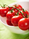 Fresh cherry tomatoes on the vine Royalty Free Stock Images