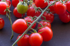 Fresh Cherry Tomatoes. With vines close up image stock photos