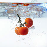 Fresh cherry tomatoes with water splash isolated on white backgr Stock Images