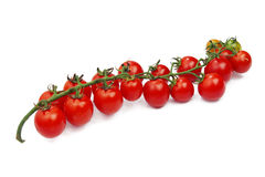 Fresh cherry tomatoes on white background Stock Images