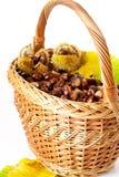 Fresh chestnut Stock Images