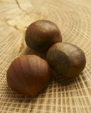 Fresh Chestnuts. Close-up photograph of arrangement of fresh raw chestnuts on natural wood surface Stock Photo