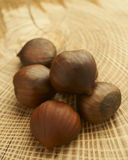 Fresh Chestnuts. Close-up photograph of arrangement of fresh raw chestnuts on natural wood surface Stock Images