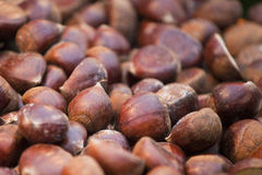Fresh chestnuts Royalty Free Stock Photos