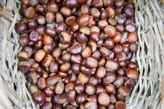 Fresh chestnuts in a basket on the market Stock Photos