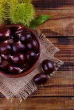 Fresh chestnuts in a bowl Stock Image