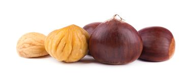 Fresh chestnuts isolated on white background. Hippocastanum isolated. Chestnut with clipping path. Macro.  stock image