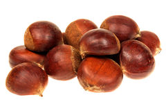 Fresh chestnuts isolated on white Stock Image