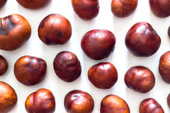 Fresh chestnuts isolated on white. On a table Stock Photography