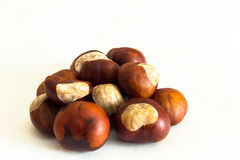 Fresh chestnuts isolated on white. On a table Stock Image